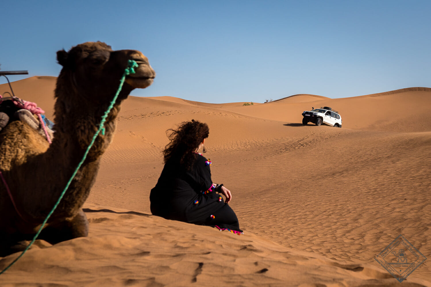 Desert Bivouac Camel Ride and 4x4 circuits