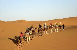 Desert Bivouac Erg Chegaga Camel trekking