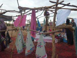 Festival Desert Bivouac