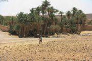 Oasis Chegaga Desert Bivouac