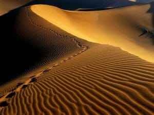 Desert Bivouac M'hamid Marokko