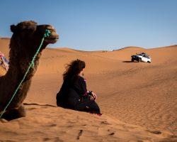 Desert Bivouac Camel Ride and 4x4 circuits