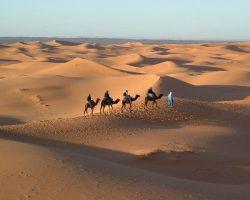 Trekking Desert Bivouac