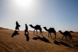 Desert Bivouac 3 night stay