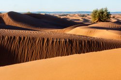 Desert Bivouac Erg Chegaga