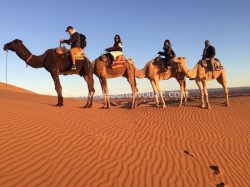 Desert Bivouac Chegaga Camp