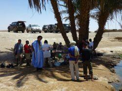 Oasis Desert Bivouac