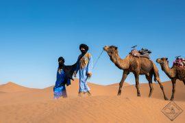 Desert Bivouac Sahara caravan