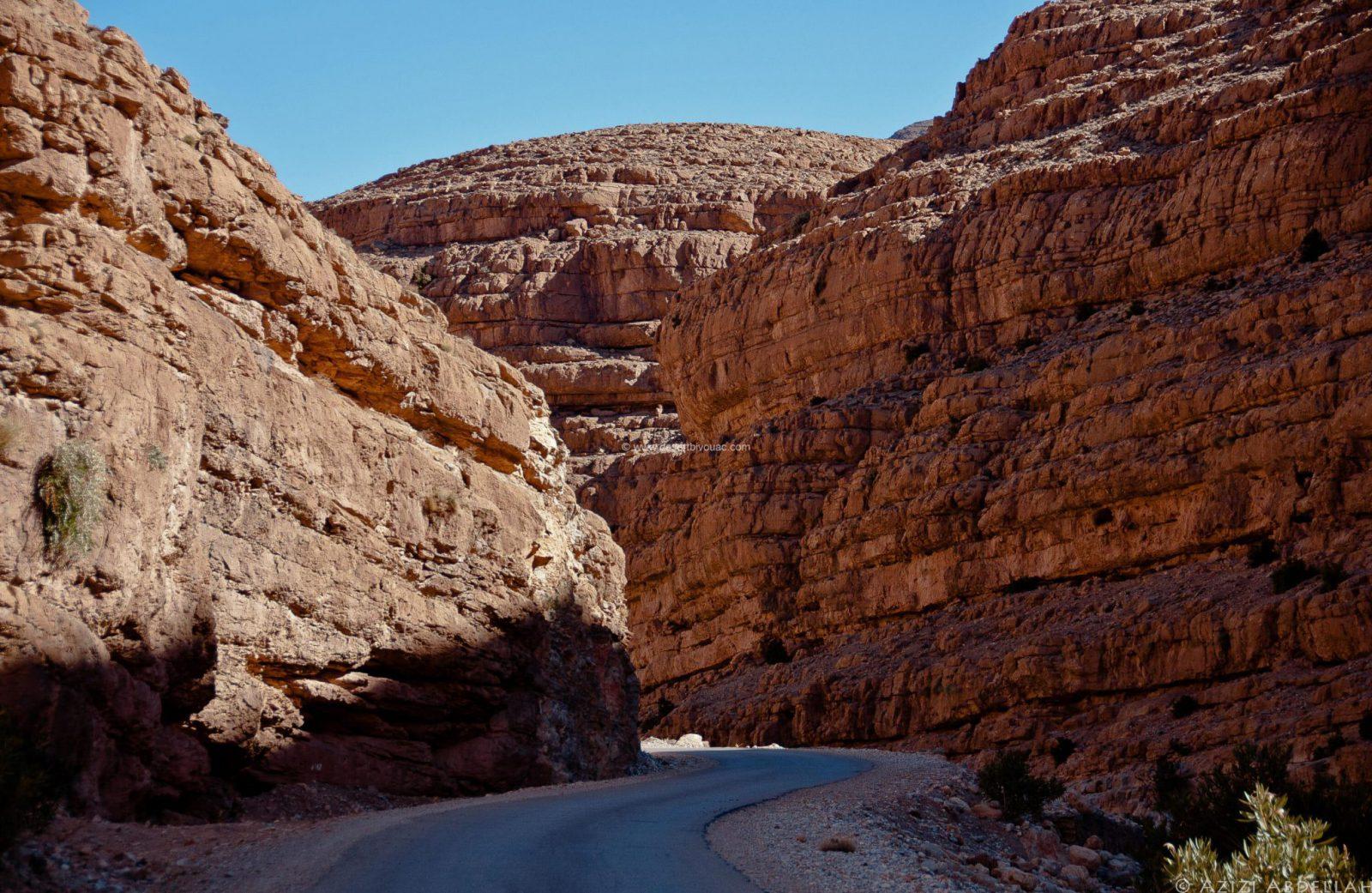 Desert Bivouac New Year