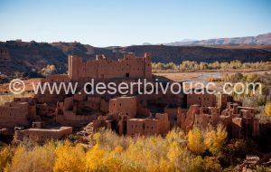 Taliouine Desert Bivouac