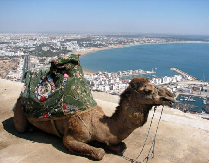 Agadir Desert Bivouac