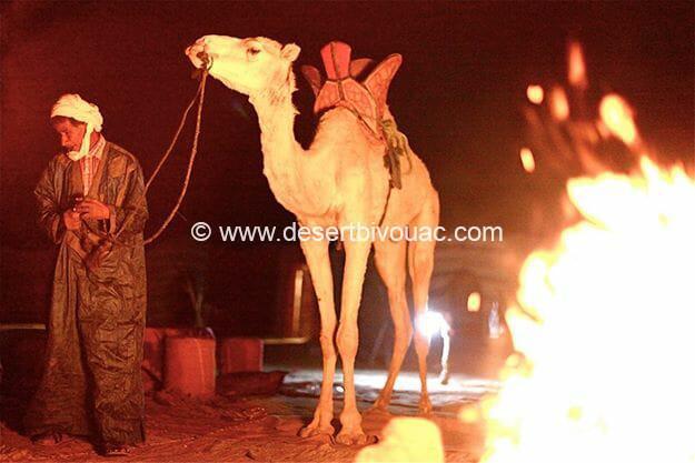New Year in the Desert, Desert Bivouac