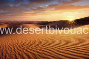 Desert Bivouac Sahara Desert