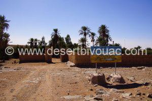 Desert Bivouac Holy Oasis